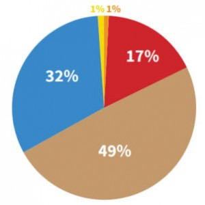 Pie chart showing the statistics