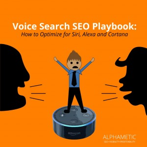 Voice search playbook